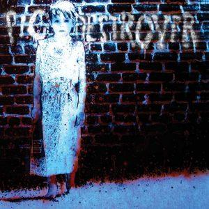 PIG DESTROYER – Book Burner CD CDs