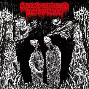 BLOODSOAKED NECROVOID – Beneath Ancient Portals CD CDs