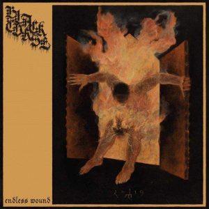 BLACK CURSE – Endless Wound CD CDs