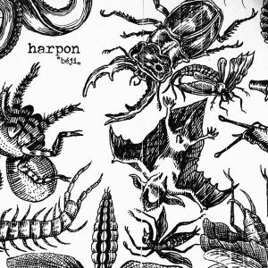 "HARPON – ""Béji"" LP 12"" Vinyl Records"