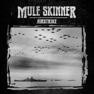 MULE SKINNER – Airstrike CD CDs