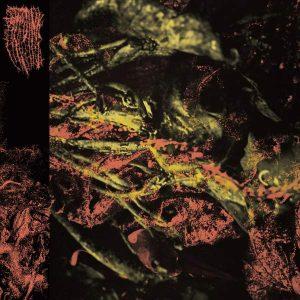 "HISSING – Permanent Destitution LP 12"" Vinyl Records"