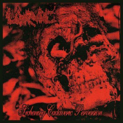 "LARVAE – Sickening Cadaveric Perversion 7"" 7"" Vinyl Records"