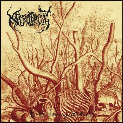 NECROBIOSIS – The Pile of Decayed Entrails CD CDs