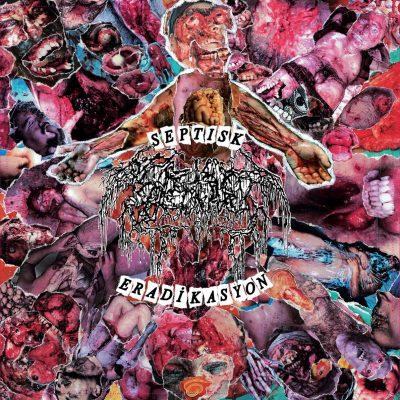 "SEPTAGE – Septisk Eradikasyon 7″ 7"" Vinyl Records"