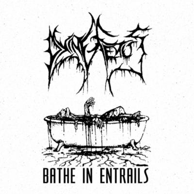 "DYING FETUS – Bathe in Entrails (1993 demo) 12″ 12"" Vinyl Records"