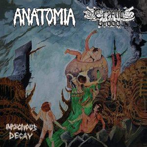 """Anatomia/Cryptic Brood 7″ vinyl 7"""" Vinyl Records"""